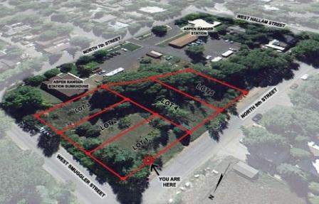 Auction Results US Forest Service Aspen West End Vacant Lots Image