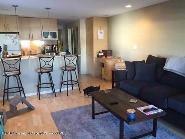 Aspen real estate 042416 142676 209 Ventnor Avenue N 1 590W