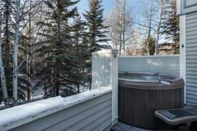 Aspen real estate 042416 730 W Bleeker Street Unit West 6 190H