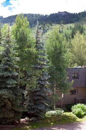 Aspen real estate 052916 142177 119 E Cooper Avenue 27 6 285W