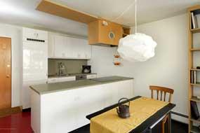 Aspen real estate 071716 143866 232 Vine Street 3 190H