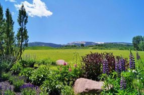 Aspen real estate 022617 144756 150 Snowmass Club Circle 1514 6 190H