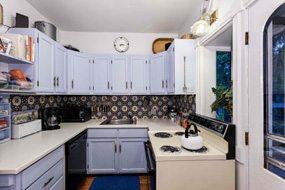 Aspen real estate 031217 140715 533 W Hallam Street 4 190H