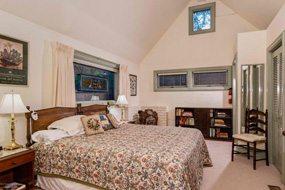 Aspen real estate 031217 140715 533 W Hallam Street 5 190H