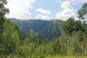 Aspen real estate 032617 147577 88 Lower Hurricane Road 6 190H