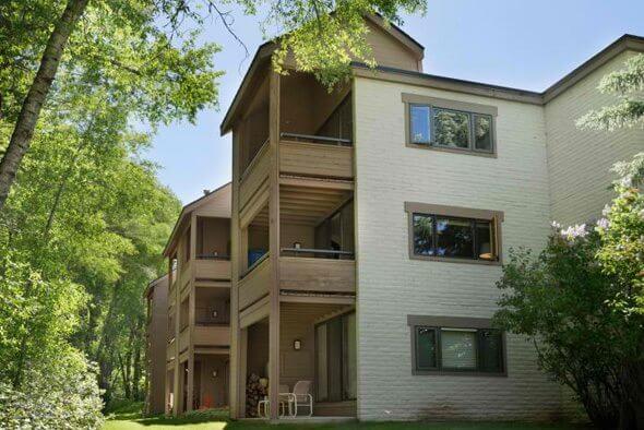 Aspen real estate 073017 149512 222 Vine Street 1 590W