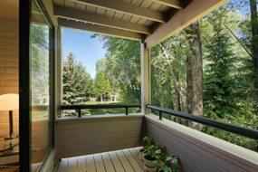 Aspen real estate 073017 149512 222 Vine Street 6 190H