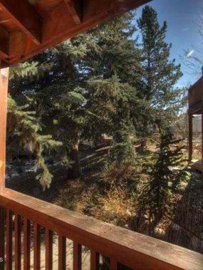 Aspen real estate 092417 149974 418 Pacific Avenue Unit 418F 6 285W