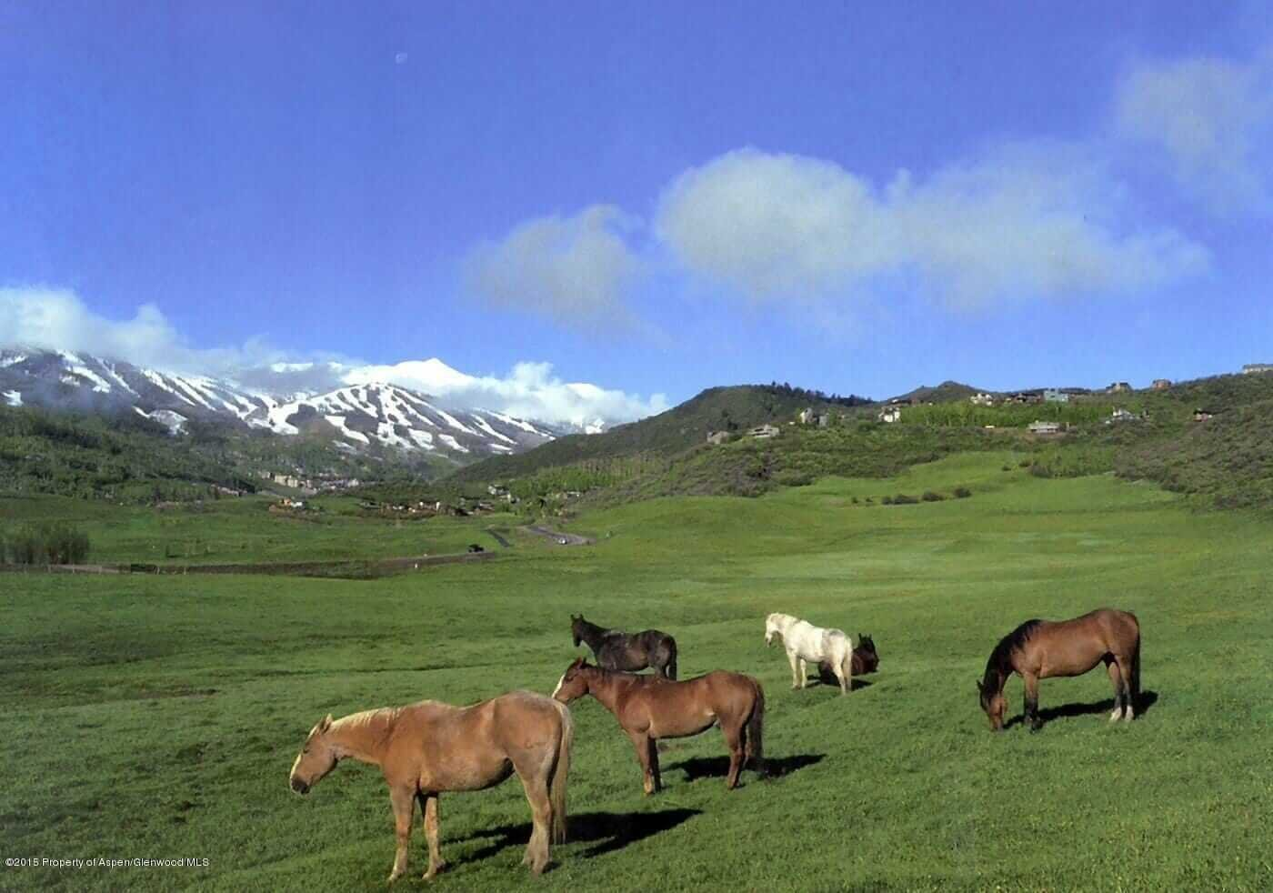 A Week of Aspen and Snowmass (5) Vacant Land Closings Image