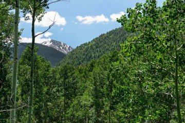 Tbd S Hayden Road, Aspen, CO: Aspen Homes or Property Recently Sold and/or Now for Sale Thumbnail